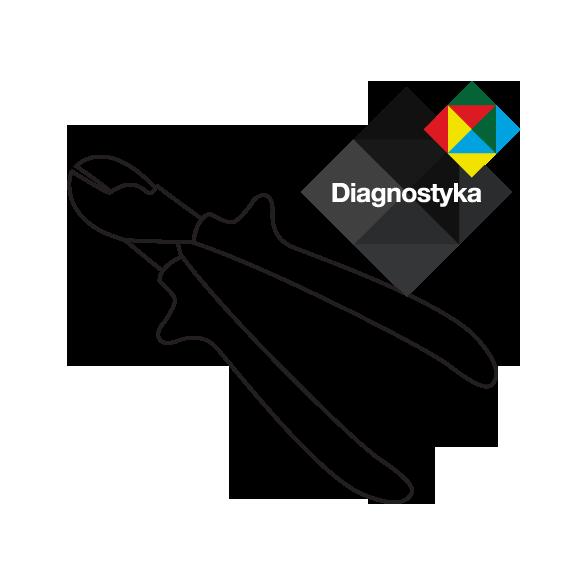 Zakład Usługowy Elektroniki - Diagnostyka